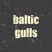 Baltic Gulls